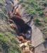 Мрша од коњ со недели стои во каналот над Бадембалари, жителите апелираат до надлежните да се отстрани псовисаното животно
